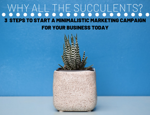 Why all the succulents? 3 steps to start a minimalistic marketing campaign for your business today.